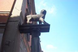 Il primo simbolo di Viterbo:il leone.